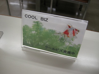 クールビズ2.JPG